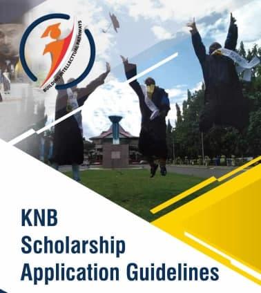 Indonesia announces scholarships l